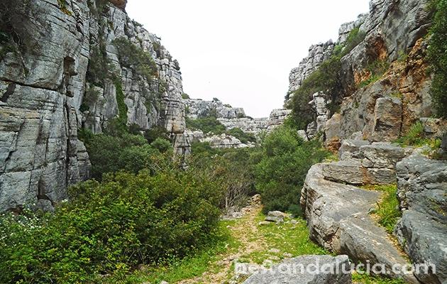 Sierra de la Utrera near Casares