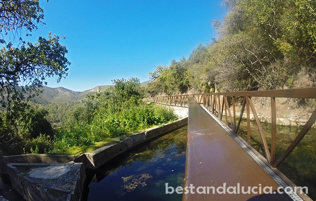 Walking, path, benahavis, pueblo, blanco, spain, andalusia, andalucia